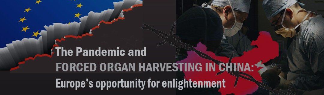 DAFOH Hosts Webinar on Force Organ Harvesting for European Parliamentarians