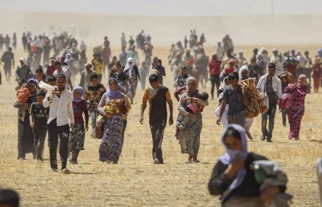 NGOs accuse Irak saying that « Êzîdî culture is under threat of extinction and erasure from history »